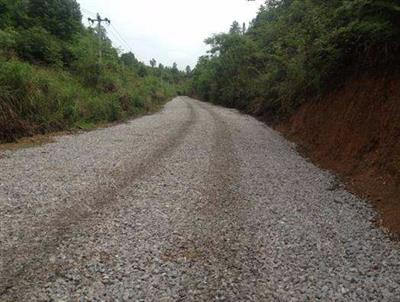 枣庄国有林场部通硬化路建设项目