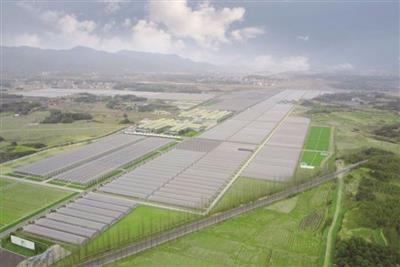 兖州后宫村生态农业建设项目