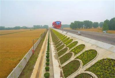 枣庄市常庄镇十字河绿化路基绿化工程