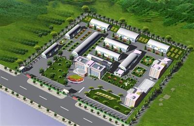 现代产业区瑞区HA希丁安集团厂房院内绿化工程