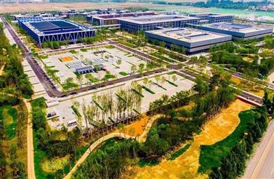 金乡县国家现代农业园大蒜绿色标准化种植基地服务中心