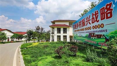 平阴县榆山街道办事处毕庄村,胡庄村乡村振兴齐鲁样板村创建