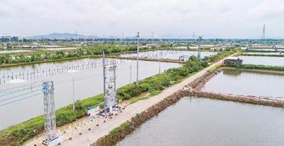 佛山市乐平镇范湖水产生态养殖示范基地道路硬底化工程
