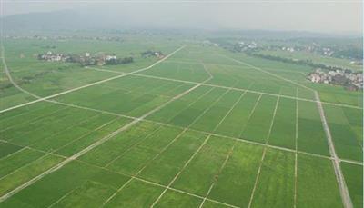 东平县2019高标准农田建设项目
