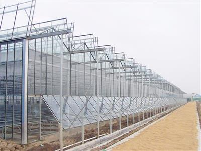兖州第一书记高效节能日光温室建设项目