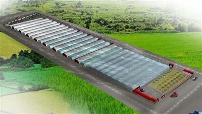 济宁市农高园东区科普示范温室改造工程